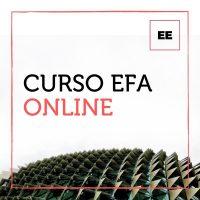 Certificación EFA Online Curso EFA online
