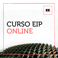 Curso EIP Online - Certificacion EIP